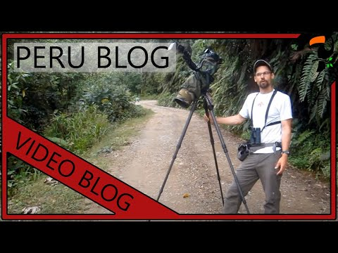 Video Blog - 3 Months in Peru (By Wildlife Photographer Glenn Bartley)