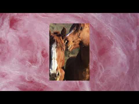 06. Recycled J - ARIZONA (ft. Natos y Waor) (Audio Oficial)