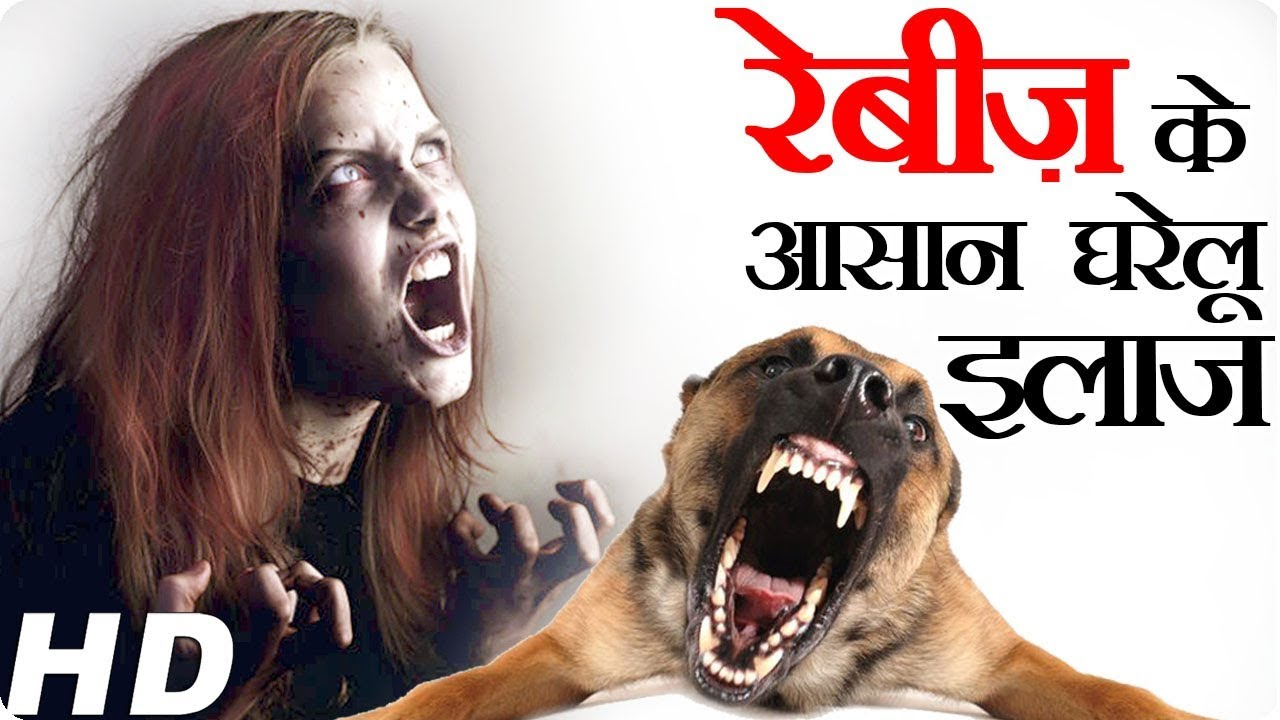 how to cure rabies disease dog bites at home।medicine science  how to cure rabies disease dog bites at home।medicine science रेबीज का आसान घरेलु इलाज