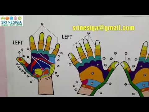 Hand Reflexology Chart Part1