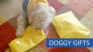 Dogs Unwrap Presents