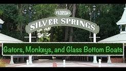 silver springs in Ocala Florida