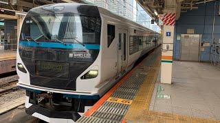 E257系特急踊り子 東京駅到着