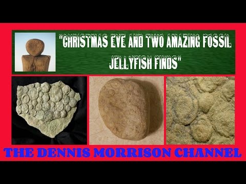 CHRISTMAS EVE AND TWO AWESOME JELLYFISH FOSSILS / AN AWESOME FIND