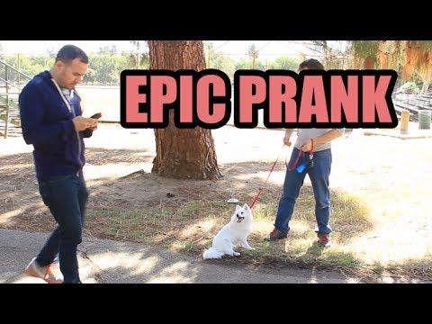Every Prank Video Ever