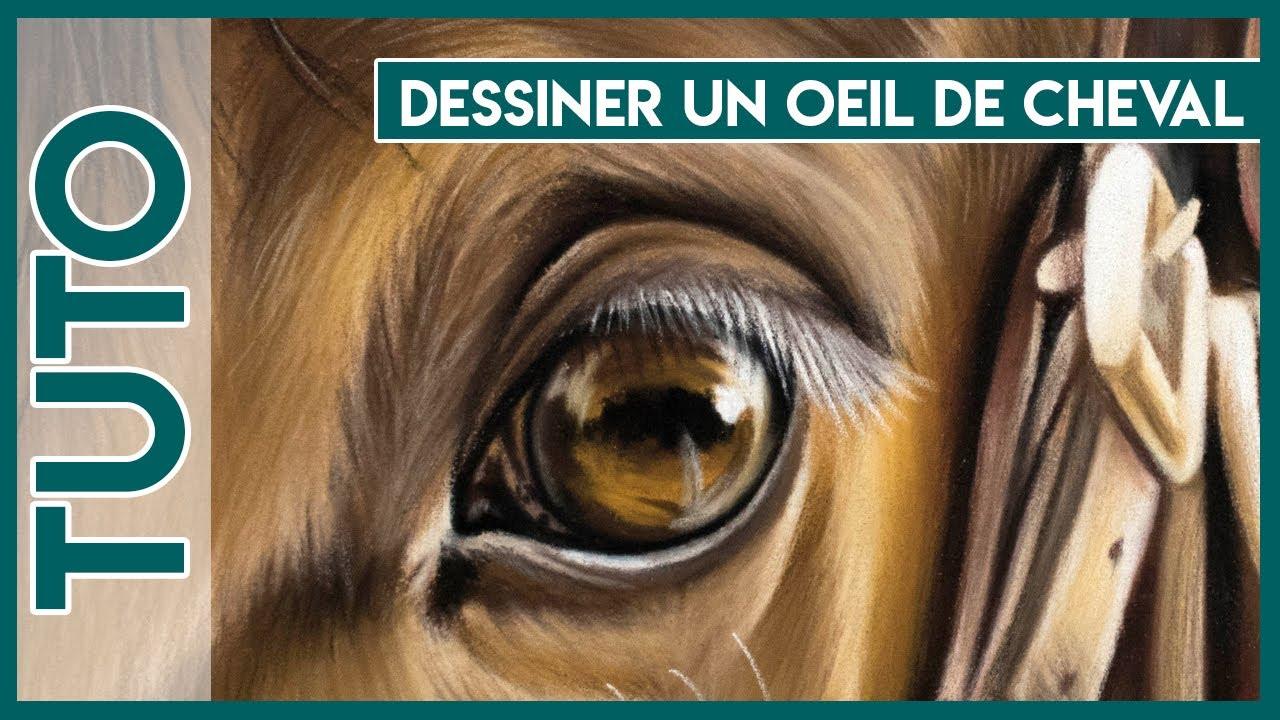 Tuto n 4 dessiner un il de cheval closetoart youtube - Cheval a dessiner facile ...