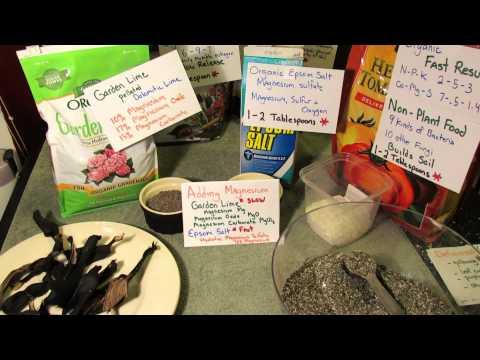Understanding Garden Magnesium: Slow Release Garden Lime & Fast Release Epsom Salts - TRG  2014