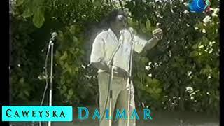 Cabdi Tahliil Warsame | Wardheer