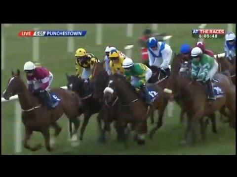Blow By Blow - attheraces.com Champion I.N.H. Flat Race (Grade 1) - 2016