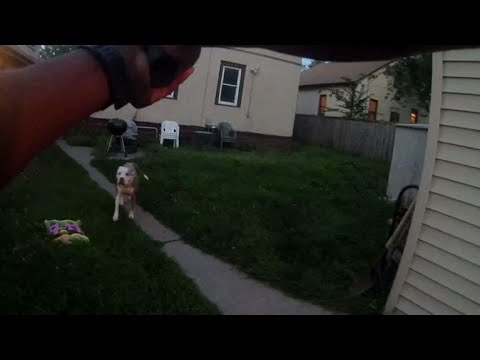 Graphic body cam footage of police officer shooting 2 dogs