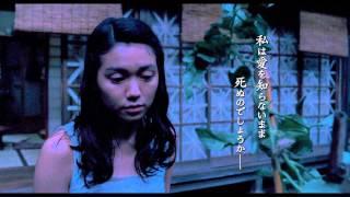 芥川賞作家・高井有一による谷崎潤一郎賞受賞の同名小説を、『ヴァイブ...