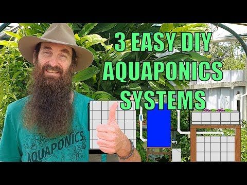 Aquaponics Design – 3 Easiest System Builds for the Backyard