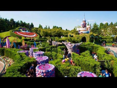 Labyrinthe D Alice Au Pays Des Merveilles Disneyland Paris