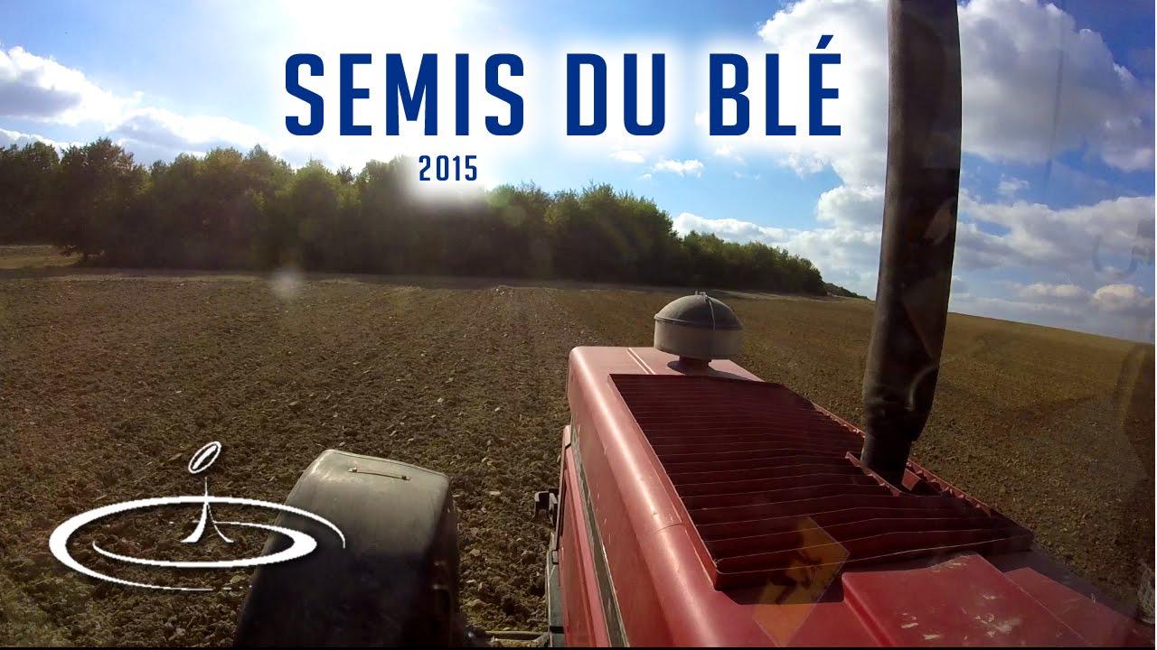 Semis du blé - 2015