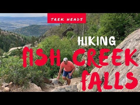 Trek Heads | Hiking Fish Creek Falls In Steamboat Springs, Colorado