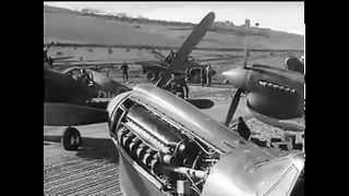 RAF No 239 Wing Kittyhawk Cutella Italy DAF