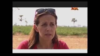 Mira Mehta  - Young Female American Lady Farming Tomato in Nigeria (Tomato Jos)