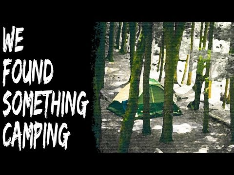 Creepy True Stories – We Found Something Disturbing While Camping