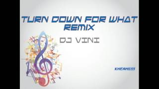 Video Turn Down For What Remix by DJ VINI download MP3, 3GP, MP4, WEBM, AVI, FLV April 2018