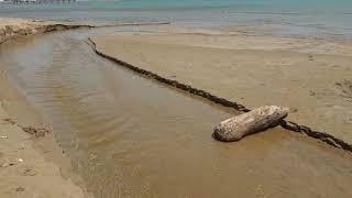 Esonda il torrente di Rio Vivo: i danni sull'arenile