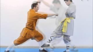 Serie técnica 3 - Shaolin Luohan Shibashou - Jia Liang Pao