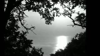 Shaman & Bahh Tee- Одна Красивая.mp4