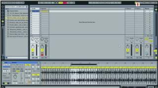 Ableton 8.04 Warping (Rus)
