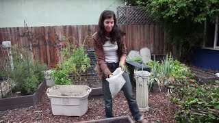 Bed Prep for Fall or Spring Gardening