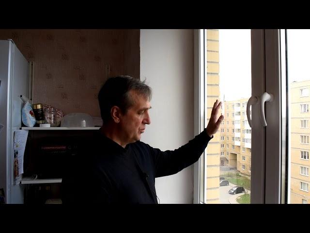 Птицы нагадили на окно, как спасти стеклопакет