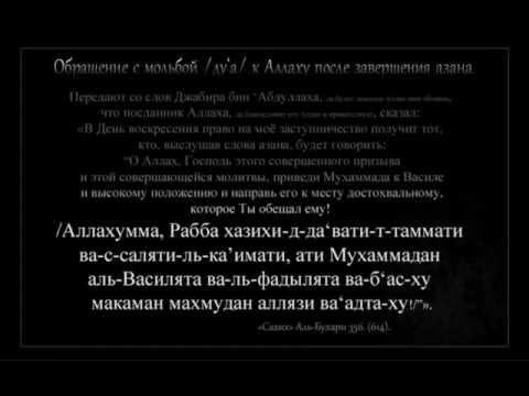 ПАЛИНДРОМЫ -
