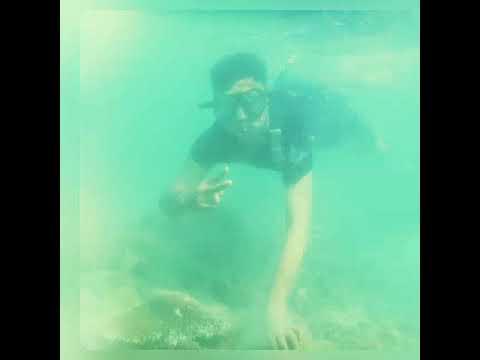 Momonon Wahai Pantai 11 Grdt