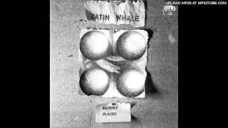 Satin Whale - Perception