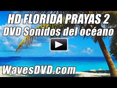HD PLAYAS de FLORIDA 2 Ondas video sonidos relajantes de onda DVD mejor relajacion oceano playa Bl