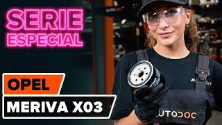 Mantenimiento Opel Meriva x03 - vídeo guía