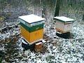 Пчеловодство осень 2017 года. Носилки для заноса ульев. Село Белавино пчеловодство.