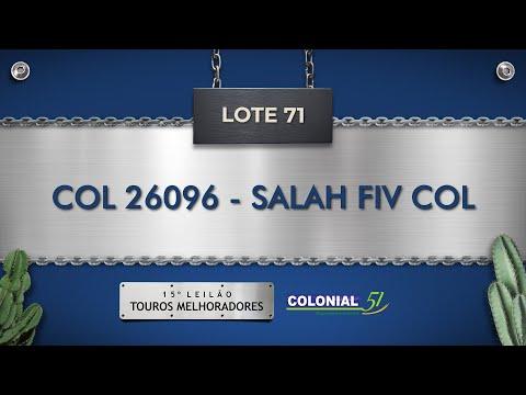 LOTE 71   COL 26096