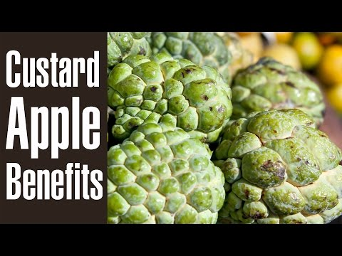 10 Health Benefits Of CUSTARD APPLE (Sitaphal)