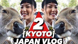 JAPAN VLOG   Part 2 - Deer Park, Fushimi Inari   soothingsista thumbnail