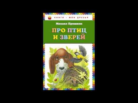 Разговор птиц и зверей   —Михаил Пришвин   —читает Павел Беседин