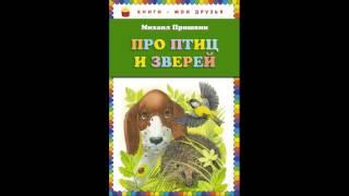 Разговор птиц и зверей  Михаил Пришвин  читает Павел Беседин