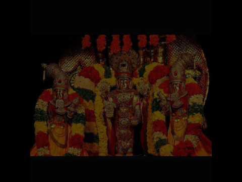 Sri Venkateshashtakam Sung By Padmaja Vasudevachar