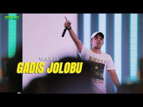 Johara Tour - WARIS : Gadis Jolobu