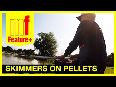 Skimmers on pellets – Rob Swan fishing at Partridge lakes