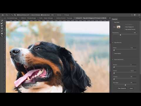 Adobe shows off the powerful new Object Selection Tool inside Photoshop