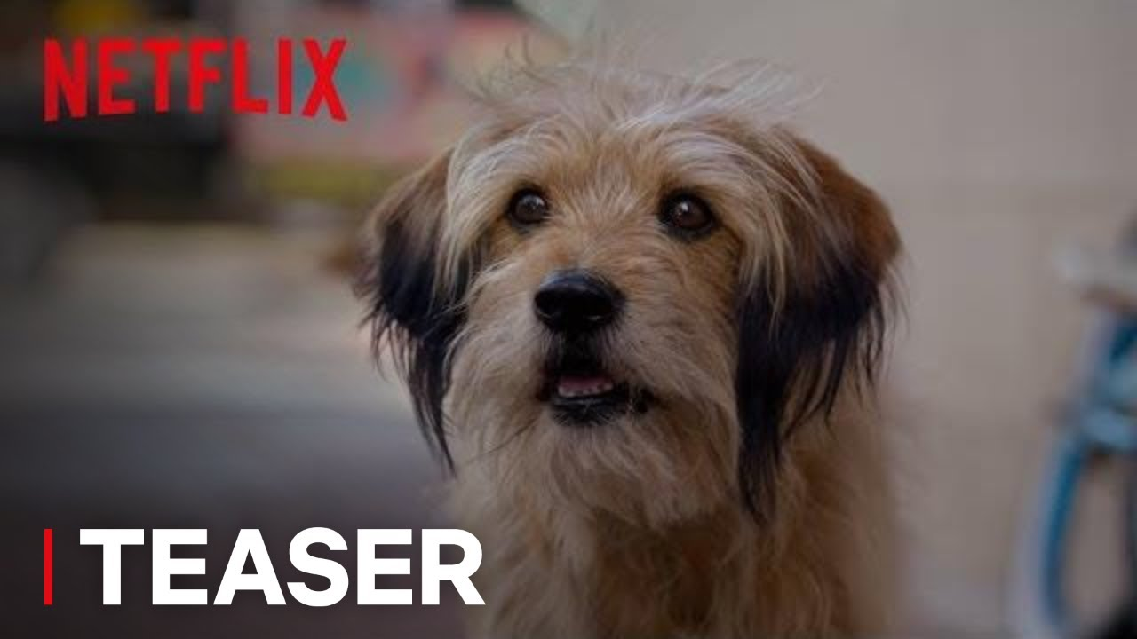 Benji | Official Teaser [HD] | Netflix
