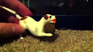 Good Dog, Bad Dog, WILD Dog (Ep. 9)