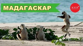 видео туры на Мадагаскар