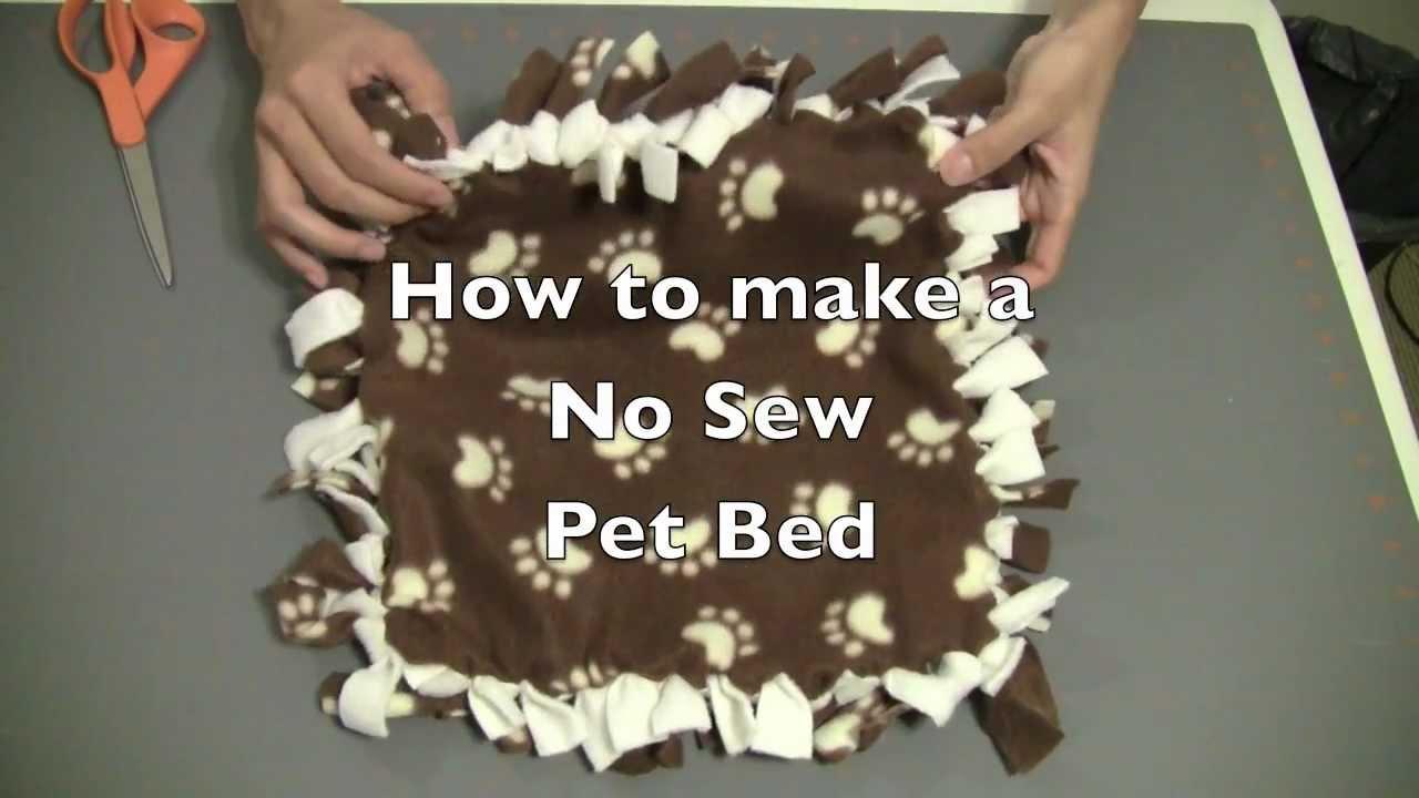 & How to make a No Sew Kitten / Cat / Dog / Pet Bed - YouTube pillowsntoast.com
