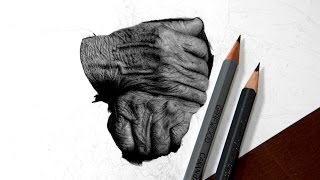 Drawing Hands - Real Time Progress