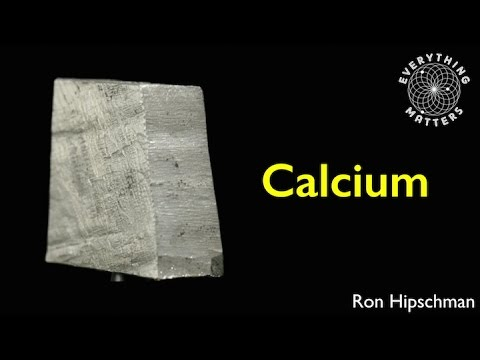 Everything Matters | Calcium | Ron Hipschman | Exploratorium